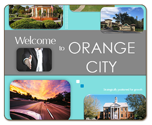 Orange City Brochure